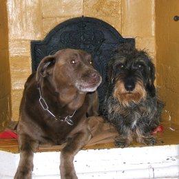 Rusty & Auguste 2010